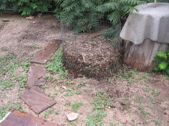 gardening.2013 111