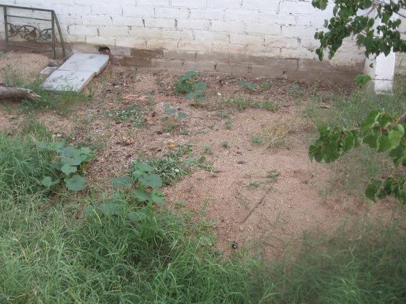 ss.gardeninghoer 017