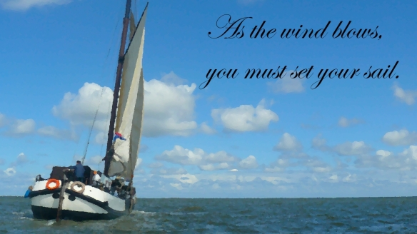As the wind blows, you must set your sails.