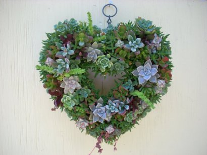 Succulent Heart Wreath 13 inch diameter